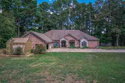 Upshur County Single Family Home For Sale: 7284 E Fm 1845