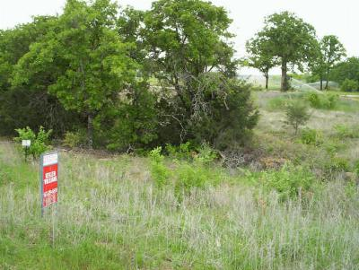Residential Lots & Land For Sale: 8 N Club View Drive