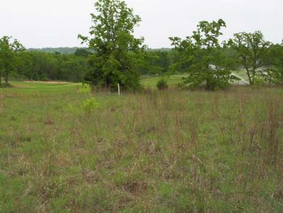 Residential Lots & Land For Sale: 31 Royal Oaks Drive