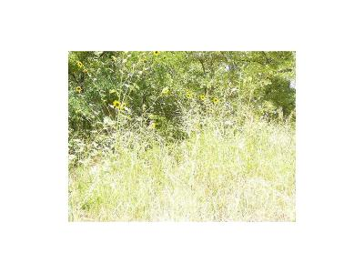 Residential Lots & Land For Sale: 107 Lark Meadow Drive