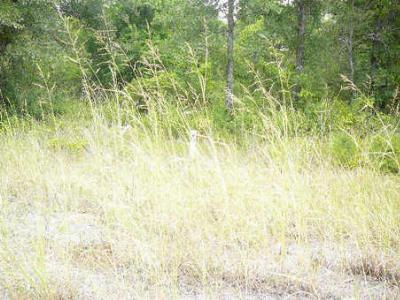 Residential Lots & Land For Sale: 403 Sleepy Meadow Drive