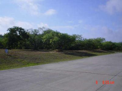 Cedar Hill Residential Lots & Land For Sale: 2542 Town View Drive #1758