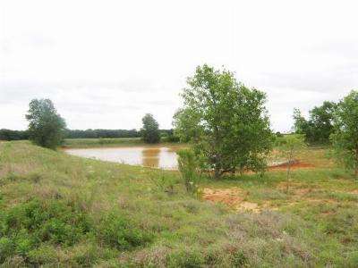 De Leon Farm & Ranch For Sale: County Road 433