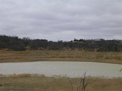 Breckenridge TX Farm & Ranch For Sale: $717,500