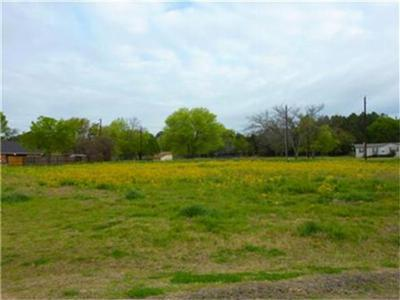Teague Residential Lots & Land For Sale: Lot 6 Carroll Drive