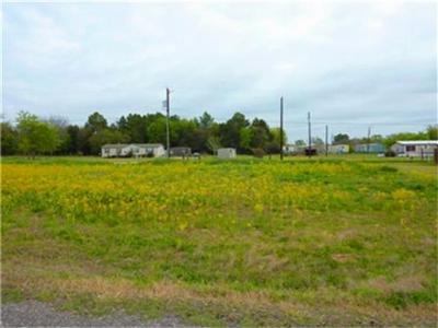 Teague Residential Lots & Land For Sale: Lot 7 Carroll Drive