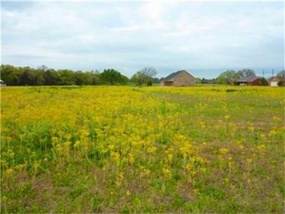Teague Residential Lots & Land For Sale: Lot 19 Carroll Drive