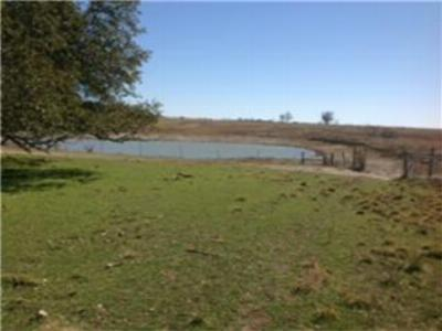 Farm & Ranch For Sale: 28 N County Road 247