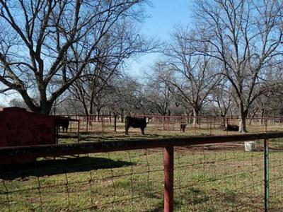 Farm & Ranch Sold: Fm 3381