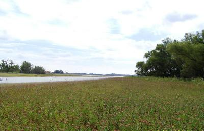 Comanche Residential Lots & Land For Sale: Lot 87 Mercers Preserve Road
