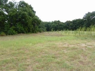 Teague Residential Lots & Land For Sale: 0000 Wildflower