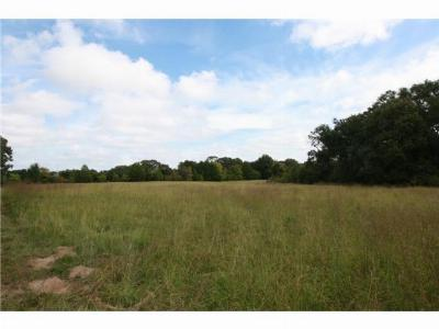 Commercial Lots & Land Active Option Contract: 18 Acres Hwy 19