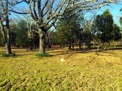 Kerens Residential Lots & Land For Sale: 65 Jackson Circle