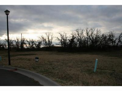Mineral Wells Residential Lots & Land For Sale: 2201 Springhill Court