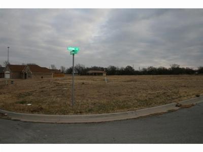 Mineral Wells Residential Lots & Land For Sale: 2212 Springhill Court