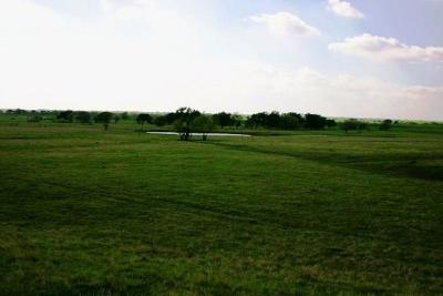 Forney Commercial Lots & Land For Sale: 1 Fm 548