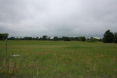 Kemp TX Residential Lots & Land Sold: $35,000