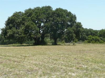 Stephenville Farm & Ranch For Sale: 2660 Private Road 1562