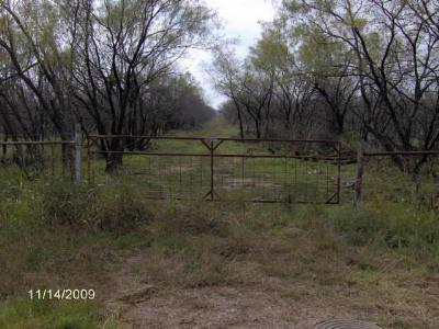 Mineral Wells Farm & Ranch For Sale: 000 Mh 379