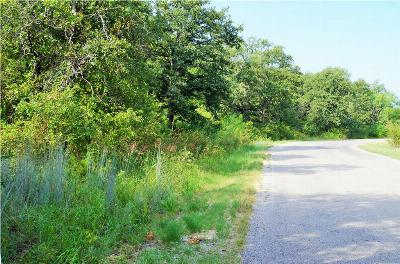 Stephenville Residential Lots & Land For Sale: Tr 16 Timber Creek Circle