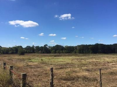 Teague Residential Lots & Land For Sale: 0000 Fm 1365
