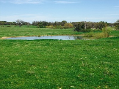Stephenville TX Farm & Ranch Sold: $139,500