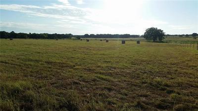 Lipan Farm & Ranch For Sale: Us Hwy Us Hwy 281