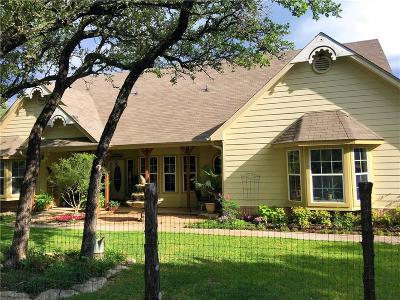 Hico Single Family Home For Sale: 7875 County Road 236
