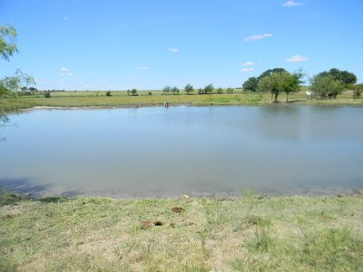Hico Farm & Ranch For Sale: Tbd County Road 119