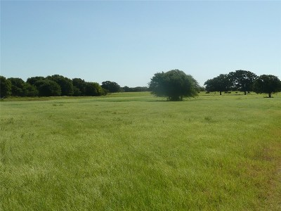Rising Star Farm & Ranch For Sale: 13707 N Highway 183