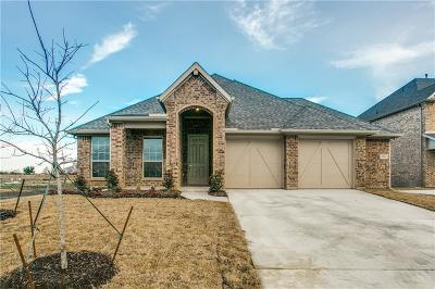 Grand Prairie Single Family Home For Sale: 316 Valentino Way