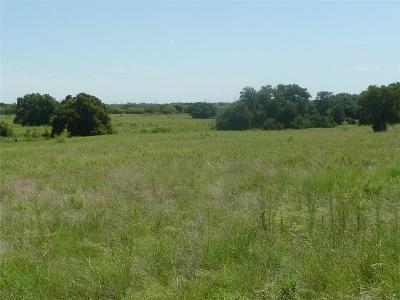 Dublin Farm & Ranch For Sale: County Road 372