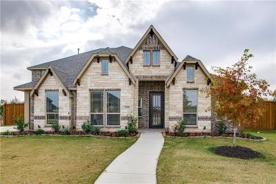 Grand Prairie Single Family Home For Sale: 2743 Neblina Court