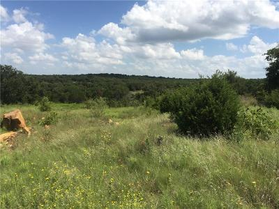 Mineral Wells Farm & Ranch For Sale: 1701 Turkey Creek Road