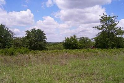 Comanche Residential Lots & Land For Sale: Tbd County Rd 420
