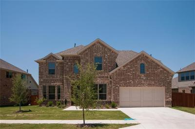 Fort Worth Single Family Home For Sale: 4332 Round Valley Lane