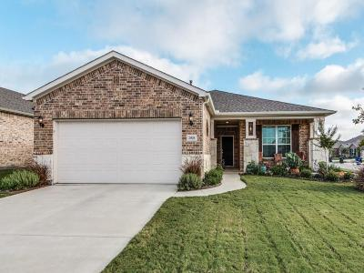Frisco Single Family Home Active Contingent: 2908 Rising Tide Drive