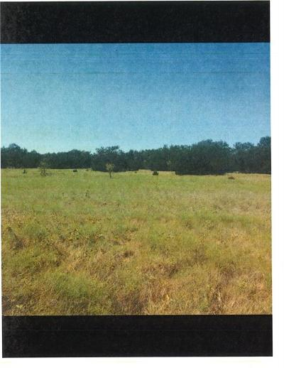 Commercial Lots & Land For Sale: 00 County Road 152