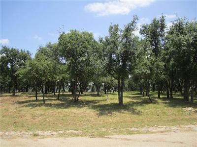May, Lake Brownwood, Brownwood Residential Lots & Land For Sale: 668 Oak Point Drive