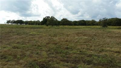 Millsap Farm & Ranch For Sale: 000b S Fm 113
