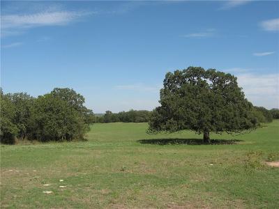 Dublin Farm & Ranch For Sale: 16333 Us Hwy 377