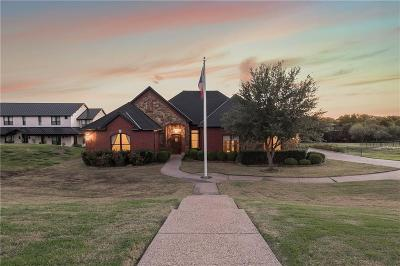 Little Elm Single Family Home For Sale: 3544 Pinnacle Bay Point