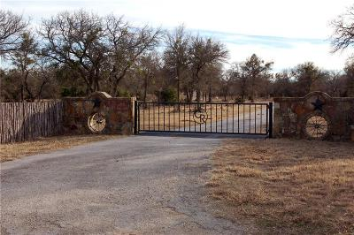 Palo Pinto Single Family Home For Sale: 4725 Chesnut Mt Road
