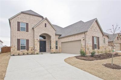 Allen Single Family Home For Sale: 1610 Indigo Trail