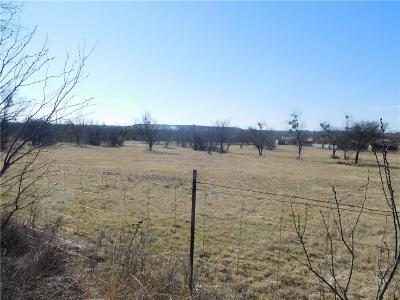 Mineral Wells Residential Lots & Land For Sale: 2701 SE 21st Street