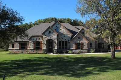 Wise County Single Family Home For Sale: 101 Northern Lights Court