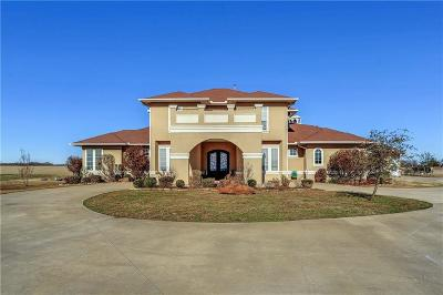 Sherman Single Family Home For Sale: 198 Pecan Valley Court