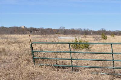 Lipan Farm & Ranch For Sale: 0000 County Road 146