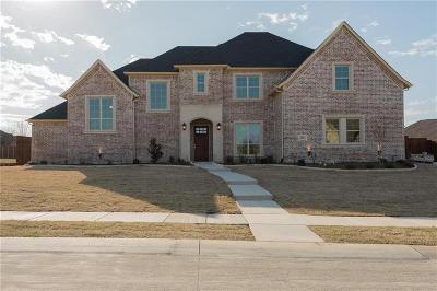 Prosper Single Family Home For Sale: 581 Amistad Drive