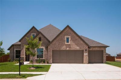 Fort Worth Single Family Home For Sale: 15011 Lions Back Cove